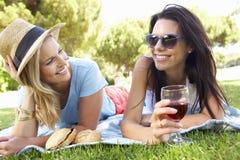 Deux amis féminins appréciant le pique-nique ensemble Photos libres de droits