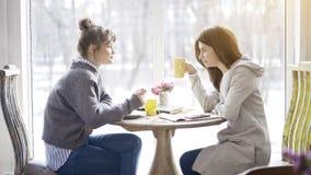 Deux amis féminins ayant une réunion dans un café Photos libres de droits