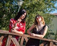 Deux amis féminins conversent sur un pont en bois le long des banques d'un courant photographie stock libre de droits