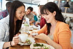 Deux amis féminins d'amis se réunissant pour le déjeuner dans le café Photographie stock libre de droits