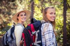 Deux amis féminins marchant ensemble dans la forêt Image stock