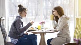 Deux amis féminins se réunissant dans un café pour manger Photo libre de droits