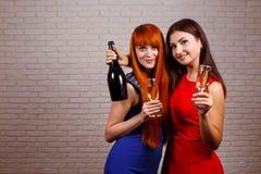 Deux amis faisant la fête et grillant des boissons Jeunes femmes heureuses avec Image stock