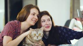 Deux amis heureux de femmes se situant dans le lit et faisant le selfie avec le chat et ont l'amusement sur le lit à la maison Photographie stock libre de droits