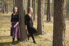 Deux amis intimes de jeunes filles marchent dans une nature de forêt de pin Image stock