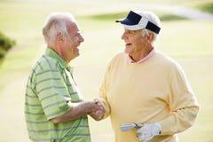 Deux amis mâles appréciant le jeu du golf Images stock