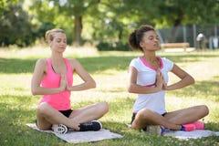 Deux amis méditant tout en faisant le yoga en parc Photos libres de droits