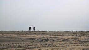 Deux amis marchent le long du rivage banque de vidéos