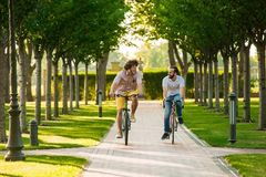 Deux amis masculins montant des vélos en parc Photo stock