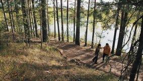 Deux amis masculins se tenant sur le sentier piéton de forêt et débuts discutant le jour ensoleillé banque de vidéos