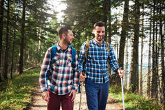 Deux amis parlant ensemble sur une traînée dans la forêt Photos libres de droits