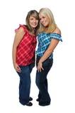 Deux amis posant ensemble Photographie stock libre de droits