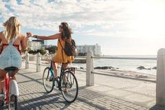 Deux amis pour un tour de vélo par la mer Photos stock