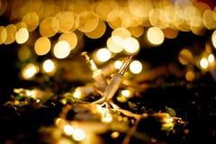 Deux ampoules Images stock