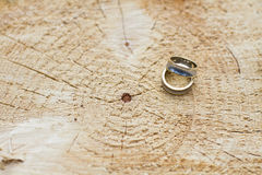Deux anneaux de mariage Images libres de droits