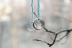 Deux anneaux de mariage d'or blanc Image stock