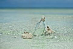 Deux anneaux de mariage sur la pierre de corail Photo libre de droits