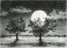 Deux arbres dans le clair de lune Photographie stock