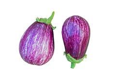 Deux aubergines mûres d'isolement sur le blanc Photo libre de droits