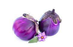 Deux aubergines pourpres d'isolement sur le blanc Images libres de droits