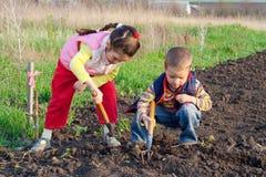 Deux bâtis d'herbe de petits enfants Images stock