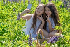Deux bébés font le selfie à un téléphone parmi des fleurs dans un domaine un jour ensoleillé photo stock
