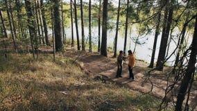 Deux balades d'amis d'hommes sur la voie de forêt et débuts discutant le jour ensoleillé clips vidéos
