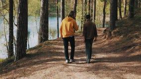 Deux balades masculines d'amis sur le sentier piéton de forêt le jour ensoleillé banque de vidéos