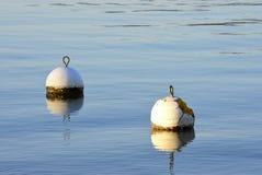 Deux balises blanches flottant sur un lac bleu Photo libre de droits