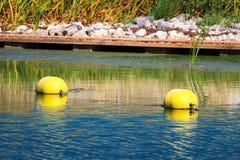 Deux balises près d'une eau affilent sur une rivière photographie stock libre de droits