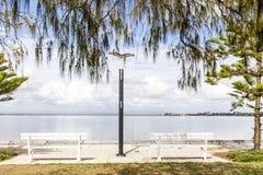 Deux bancs blancs se reposent sur les eaux affilent C'est matin et l'océan est calme Les branches d'arbre surplombent le dessus d image libre de droits