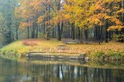 Deux bancs dans une forêt colorée d'automne Photographie stock libre de droits