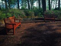 Deux bancs de parc solitaires que je vois rarement des personnes à Images stock