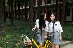Deux beaux amis adorables mignons heureux chinois asiatiques de bestie d'étudiants montent la bicyclette partagée par jaune à l'é photographie stock