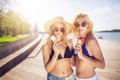 Deux beaux amis en vacances Images stock