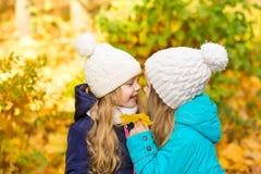 Deux belles amies en parc d'automne Photo stock
