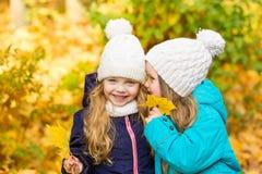 Deux belles amies en parc d'automne Photographie stock