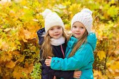 Deux belles amies en parc d'automne Image stock