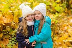 Deux belles amies en parc d'automne Photos stock