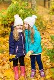 Deux belles amies en parc d'automne Image libre de droits