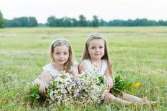 Deux belles amies sur le pré Photos libres de droits