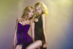 Deux belles femmes Photo libre de droits