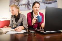 Deux belles filles avec l'ordinateur portatif dans le bureau Photo stock