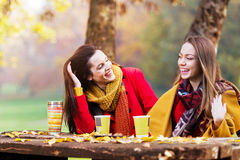 Deux belles jeunes femmes parlant et appréciant un jour ensoleillé Photos libres de droits