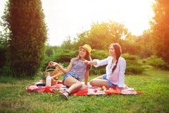 Deux belles jeunes filles à un pique-nique pendant l'été en parc mangeant des pommes et parler Photographie stock