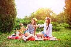 Deux belles jeunes filles à un pique-nique pendant l'été en parc mangeant des pommes et parler Photographie stock libre de droits