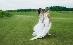 Deux belles jeunes mariées marchant sur le champ vert Photos stock