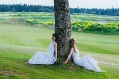 Deux belles jeunes mariées s'asseyant près de l'arbre sur le champ vert Image libre de droits