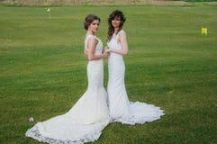 Deux belles jeunes mariées tenant des mains sur le champ vert Photos libres de droits