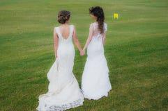 Deux belles jeunes mariées tenant des mains sur le champ vert Photo stock